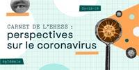 Carnet de l'EHESS : perspectives de sciences sociales sur le coronavirus
