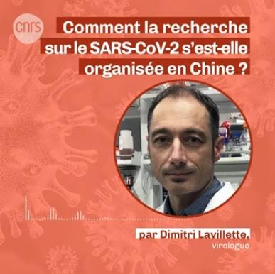 CNRS – Comment la recherche sur le SARS-CoV-2 s'est-elle organisée en Chine ?