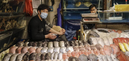 At least four Covid-19 cases have been confirmed in Beijing that had no links to the Xinfadi wholesale food market. © EPA-EFE