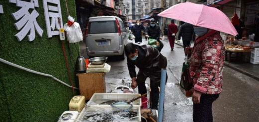 La conclusion des recherches contredit la version officielle, qui veut que le premier malade soit apparu sur ce marché de Wuhan. © AFP/Hector Retamal