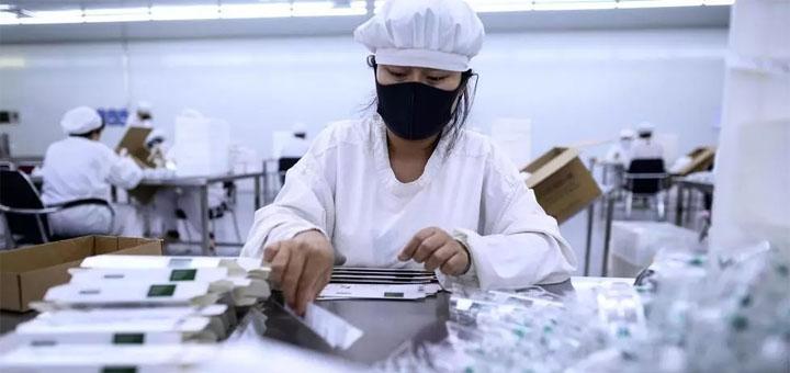 Parmi les laboratoires chinois dans la course au vaccin contre le coronavirus, la Yisheng Biopharma à Shenyang, le 9 juin 2020. © NOEL CELIS / AFP