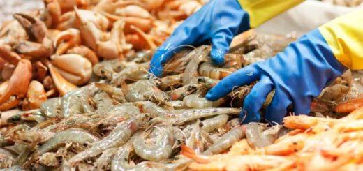 La Chine s'inquiète pour la sécurité des produits alimentaires depuis la découverte d'un foyer épidémique dans un gigantesque marché de gros du sud de Pékin. © Tristan Ben Mahjoub / TristanBM - stock.adobe.com