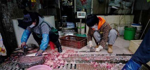 Des vendeuses de poissons photographiées lundi au marché de Wuhan en Chine © Reuters / Aly Song