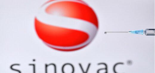 Une présentation du vaccin contre la Covid-19 produit par le laboratoire chinois Sinovac. © JUSTIN TALLIS / AFP
