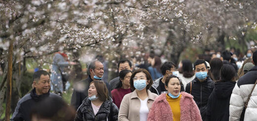 Tourists view blooming cherry blossoms at the Moshan scenic spot by the East Lake in Wuhan, Central China's Hubei province, March 11, 2021. © Xinhua
