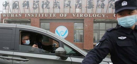 Les conditions de l'enquête des experts de l'OMS en Chine font débat. © Koki Kataoka / Yomiuri / The Yomiuri Shimbun via AFP